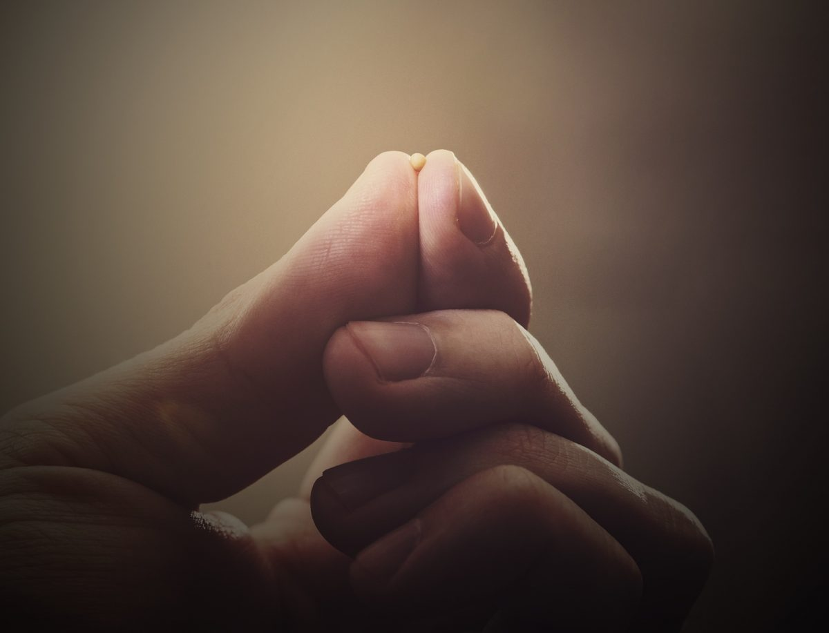 Mustard seed and fingertips