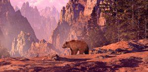 Bear 178